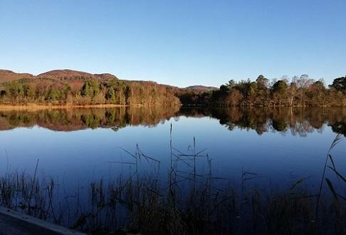 Scottish Wildlife Trust - Loch of the Lowes Visitor Centre and Wildlife Reserve