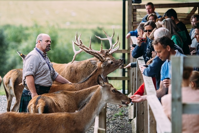 Highland Safaris in Perthshire